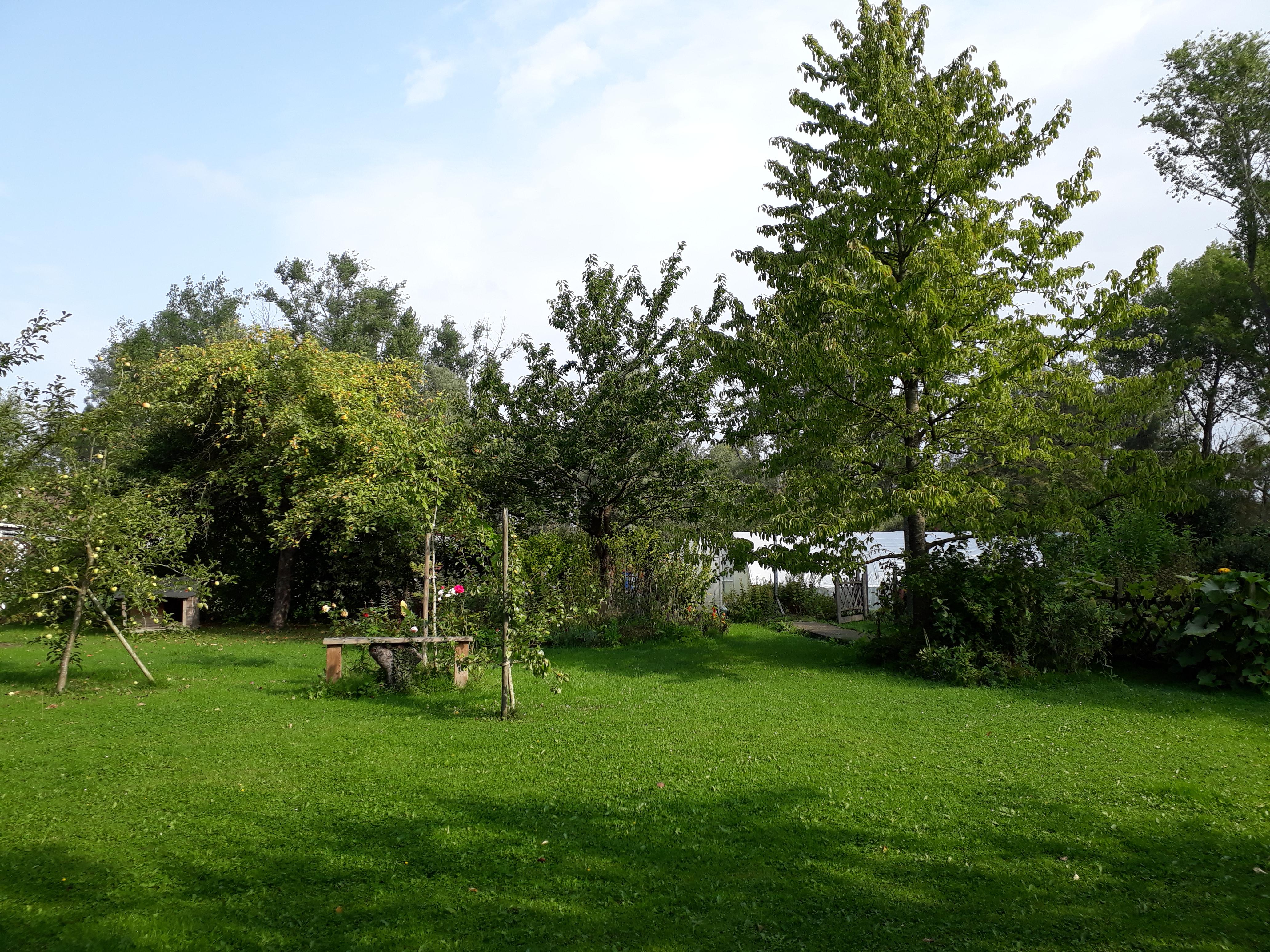Jardin- été -vue3